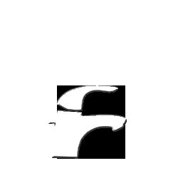 Hansgrohe Focus E